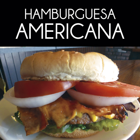 Hamburguesas y Hot Dogs 10