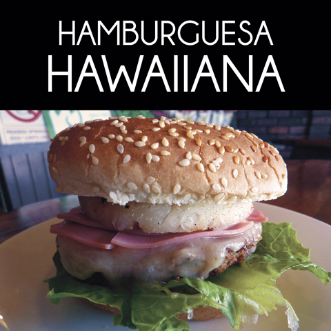 Hamburguesas y Hot Dogs 9