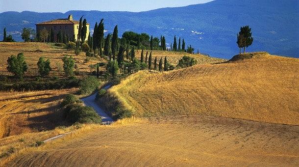 Inspiración Al Forno – Toscana 4
